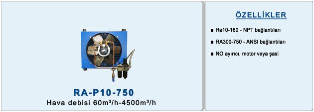 ra-p10-750